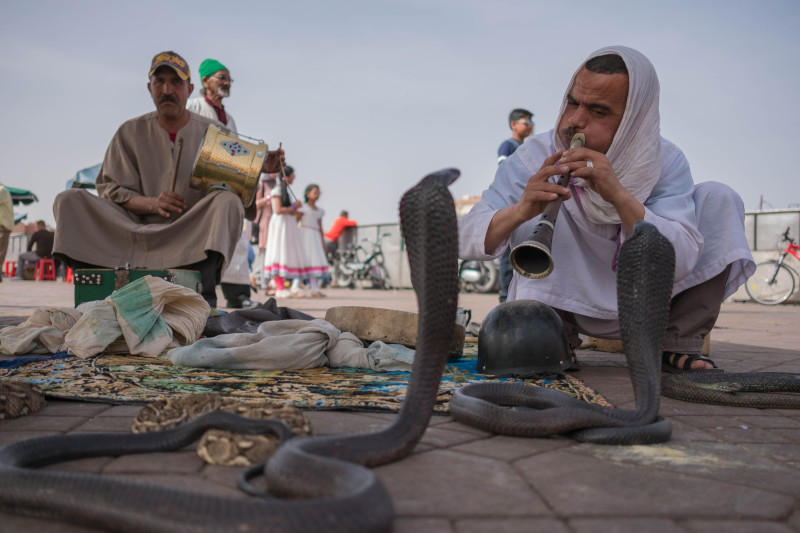 Música do Marrocos