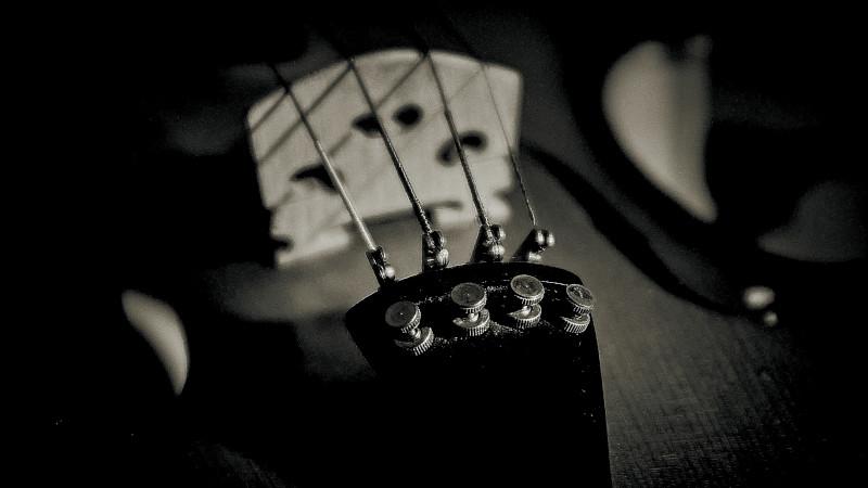Cordas - Aulas de violino.