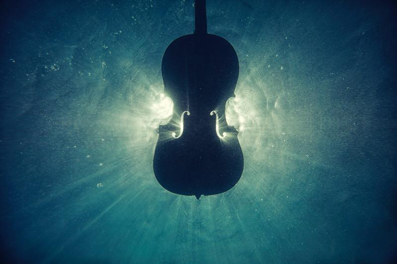 Conceito de violino.