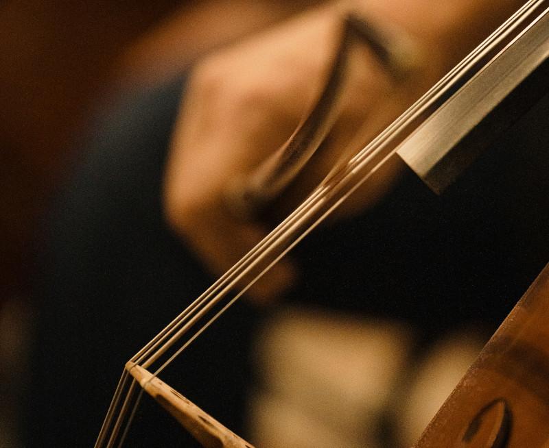 Treinando violino para iniciantes.